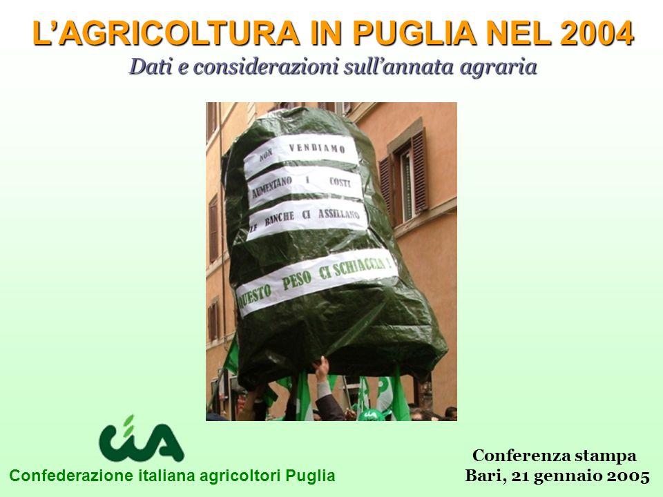 Confederazione italiana agricoltori Puglia LAGRICOLTURA IN PUGLIA NEL 2004 Dati e considerazioni sullannata agraria Conferenza stampa Bari, 21 gennaio 2005