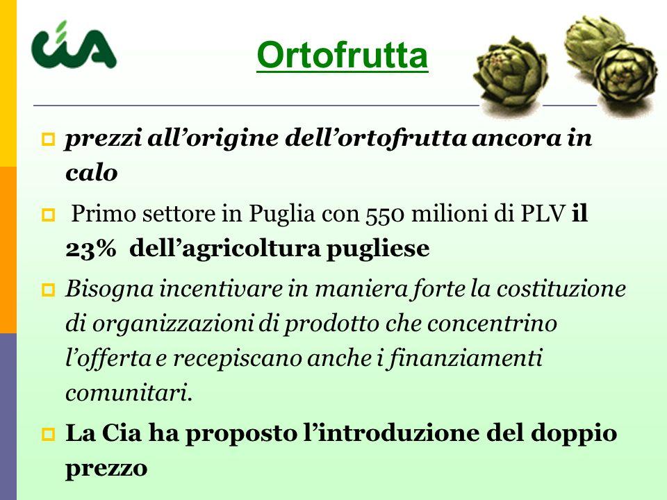 prezzi allorigine dellortofrutta ancora in calo Primo settore in Puglia con 550 milioni di PLV il 23% dellagricoltura pugliese Bisogna incentivare in maniera forte la costituzione di organizzazioni di prodotto che concentrino lofferta e recepiscano anche i finanziamenti comunitari.