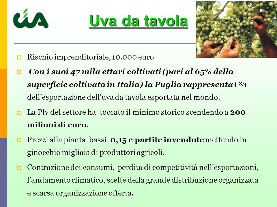 Rischio imprenditoriale, 10.000 euro Con i suoi 47 mila ettari coltivati (pari al 65% della superficie coltivata in Italia) la Puglia rappresenta Con i suoi 47 mila ettari coltivati (pari al 65% della superficie coltivata in Italia) la Puglia rappresenta i ¾ dellesportazione dell uva da tavola esportata nel mondo.