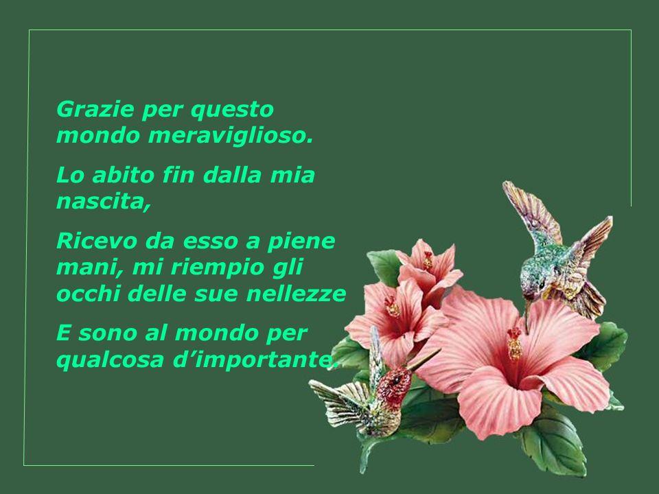 Grazie per i fiori Che cantano le mie gioie ed i miei amori.