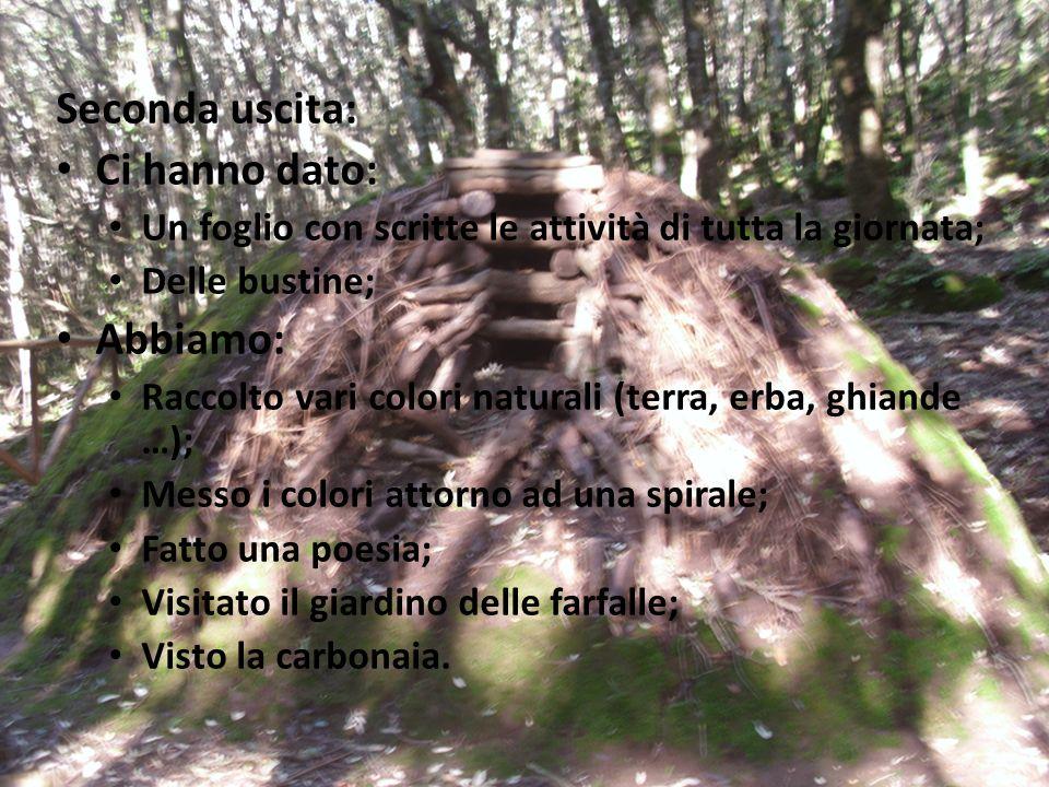 Terza uscita: Attività: Abbiamo fatto un albero con le persone; Ci hanno bendato e fatto riconoscere degli alberi; Abbiamo visitato un museo (dove cerano animali imbalsamati, fiori, minerali …); Siamo andati a visitare il giardino Linasia.