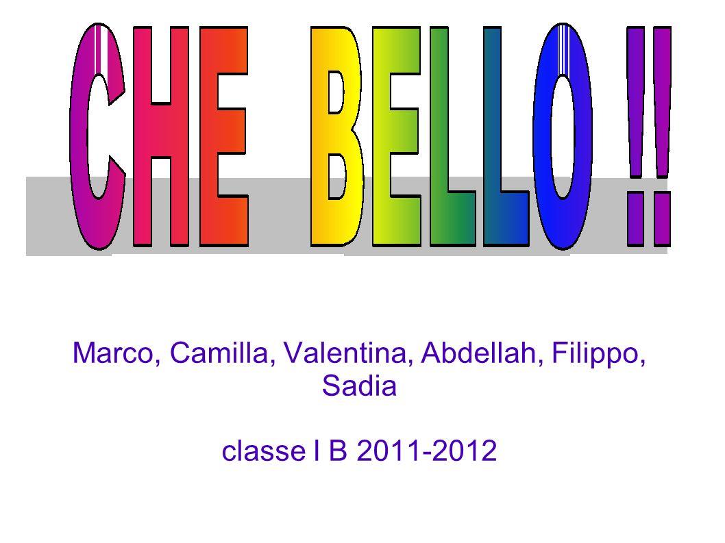 Marco, Camilla, Valentina, Abdellah, Filippo, Sadia classe I B 2011-2012