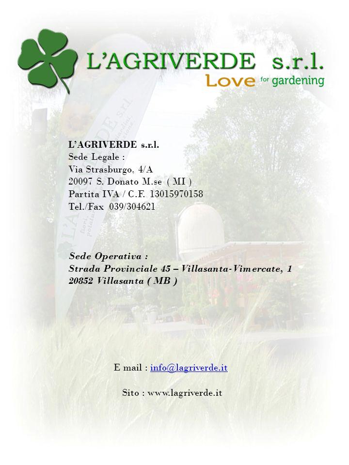 LAGRIVERDE s.r.l. Sede Legale : Via Strasburgo, 4/A 20097 S. Donato M.se ( MI ) Partita IVA / C.F. 13015970158 Tel./Fax 039/304621 Sede Operativa : St