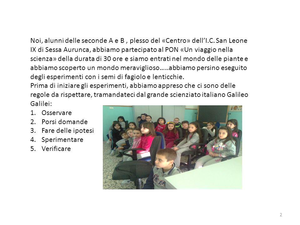 Noi, alunni delle seconde A e B, plesso del «Centro» dellI.C. San Leone IX di Sessa Aurunca, abbiamo partecipato al PON «Un viaggio nella scienza» del