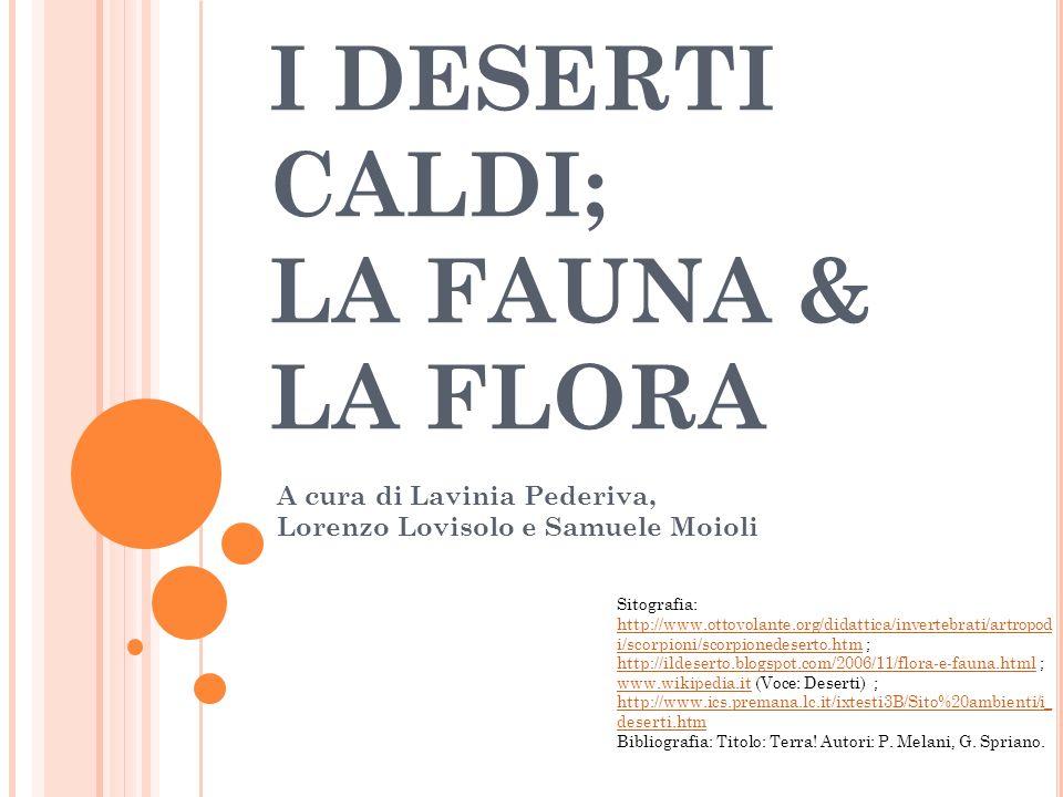 I DESERTI CALDI; LA FAUNA & LA FLORA A cura di Lavinia Pederiva, Lorenzo Lovisolo e Samuele Moioli Sitografia: http://www.ottovolante.org/didattica/in