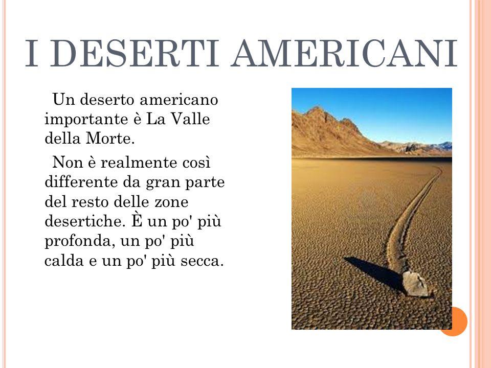 I DESERTI AMERICANI Un deserto americano importante è La Valle della Morte. Non è realmente così differente da gran parte del resto delle zone deserti
