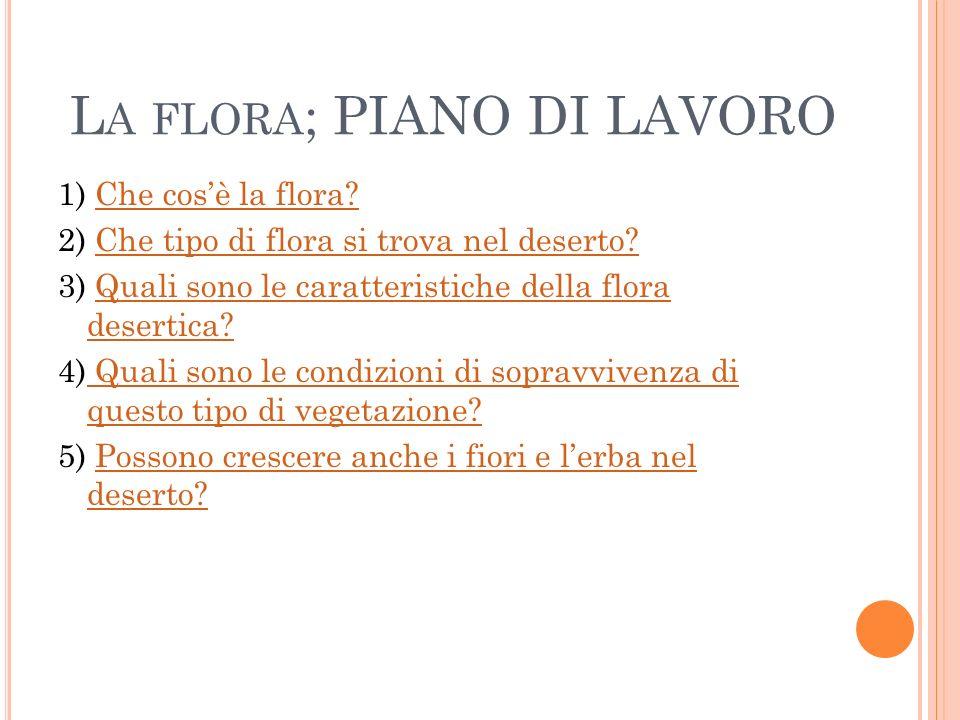 L A FLORA ; PIANO DI LAVORO 1) Che cosè la flora?Che cosè la flora? 2) Che tipo di flora si trova nel deserto?Che tipo di flora si trova nel deserto?