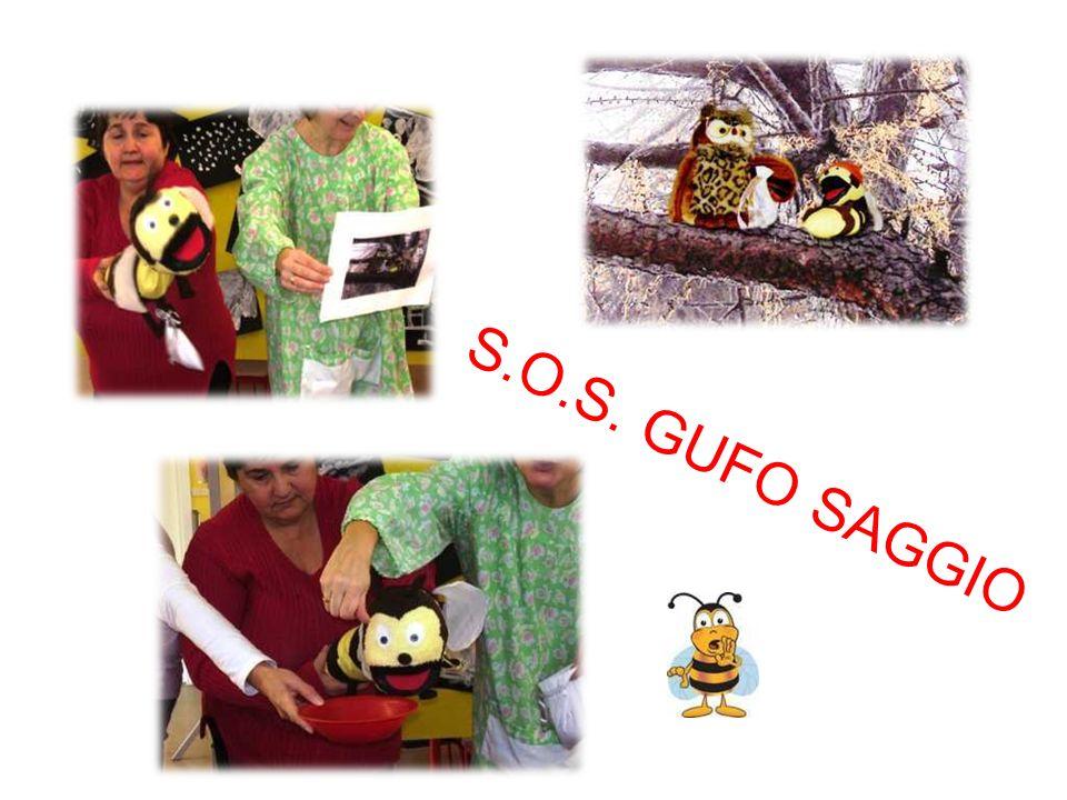 S.O.S. GUFO SAGGIO