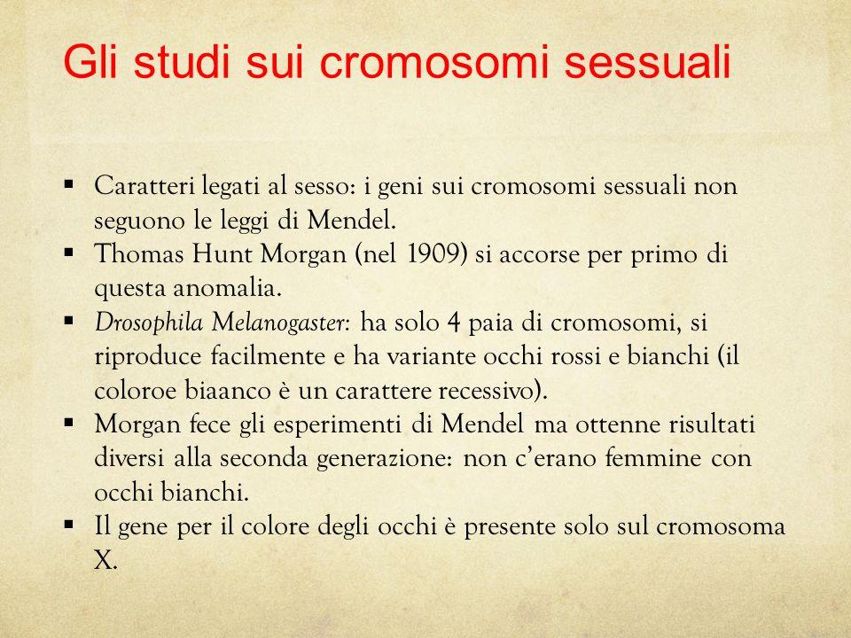 28 I cromosomi sessuali Certi caratteri si trovano sui cromosomi sessuali Per i cromosomi sessuali la coppia è uguale solo nella femmina XX, nel masch