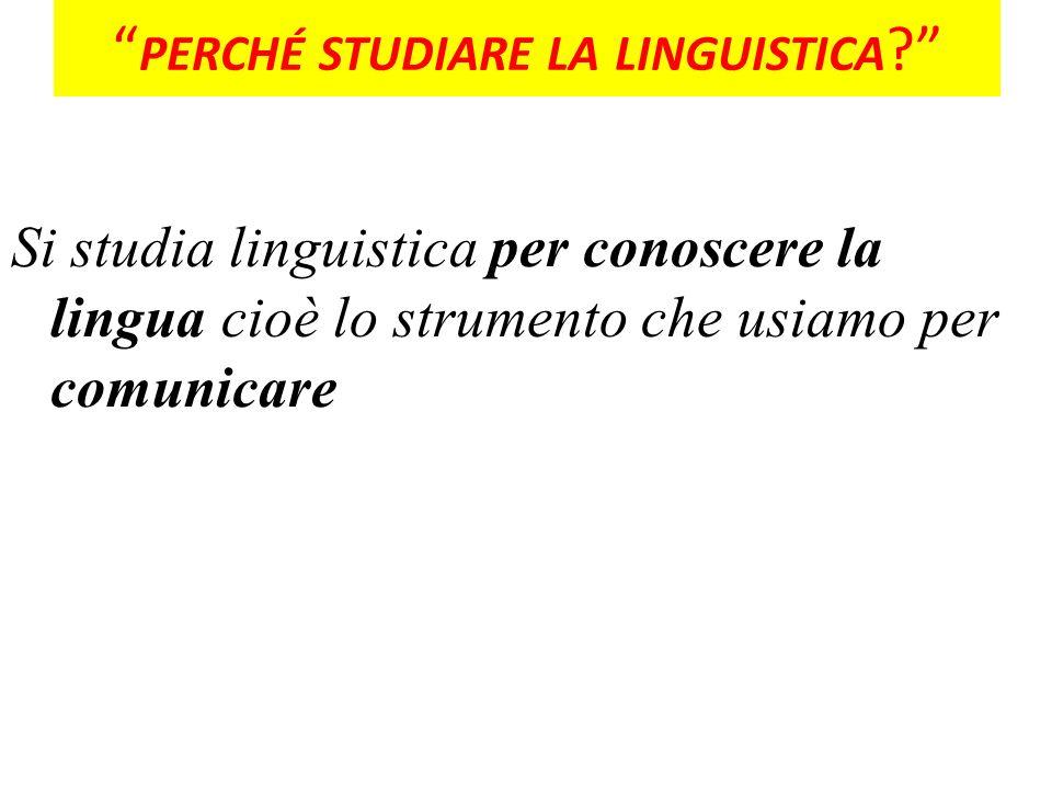 PERCHÉ STUDIARE LA LINGUISTICA ? Si studia linguistica per conoscere la lingua cioè lo strumento che usiamo per comunicare