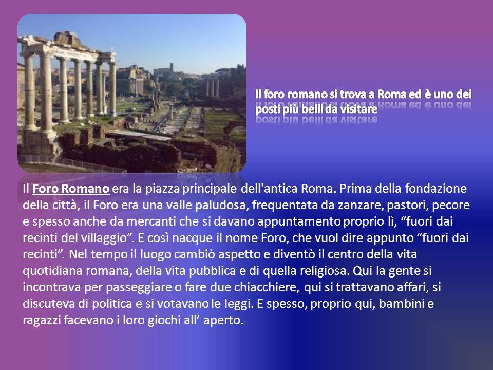 Il Foro Romano era la piazza principale dell'antica Roma. Prima della fondazione della città, il Foro era una valle paludosa, frequentata da zanzare,
