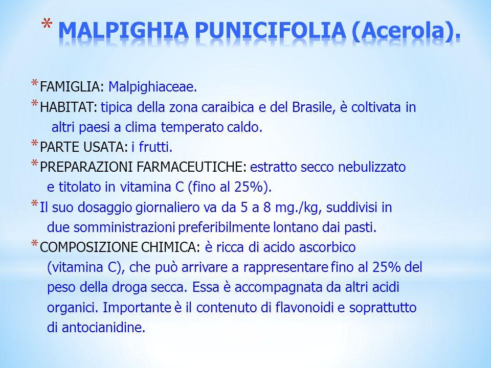 * FAMIGLIA: Malpighiaceae. * HABITAT: tipica della zona caraibica e del Brasile, è coltivata in altri paesi a clima temperato caldo. * PARTE USATA: i