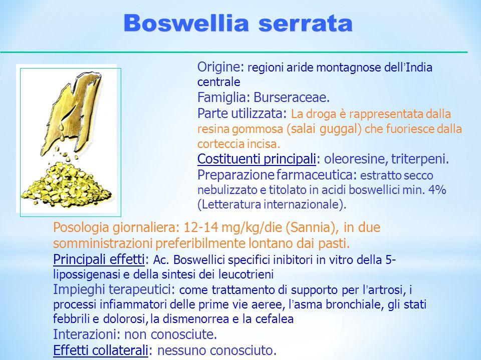 Boswellia serrata Origine: regioni aride montagnose dell India centrale Famiglia: Burseraceae. Parte utilizzata: La droga è rappresentata dalla resina