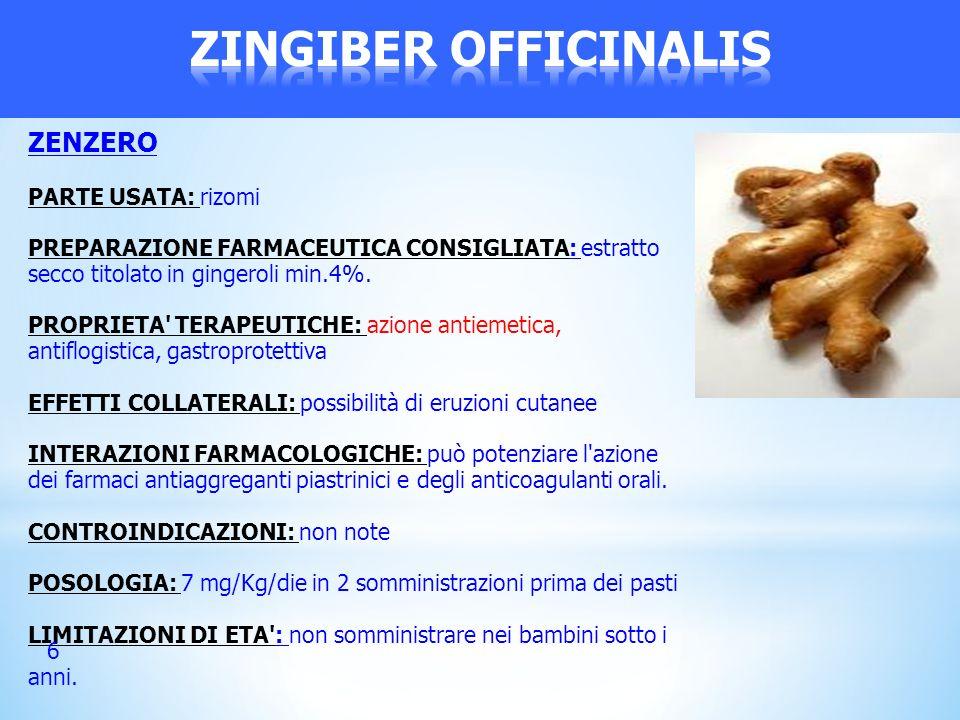 ZENZERO PARTE USATA: rizomi PREPARAZIONE FARMACEUTICA CONSIGLIATA: estratto secco titolato in gingeroli min.4%. PROPRIETA' TERAPEUTICHE: azione antiem
