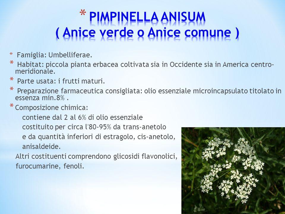 * Famiglia: Umbelliferae. * Habitat: piccola pianta erbacea coltivata sia in Occidente sia in America centro- meridionale. * Parte usata: i frutti mat
