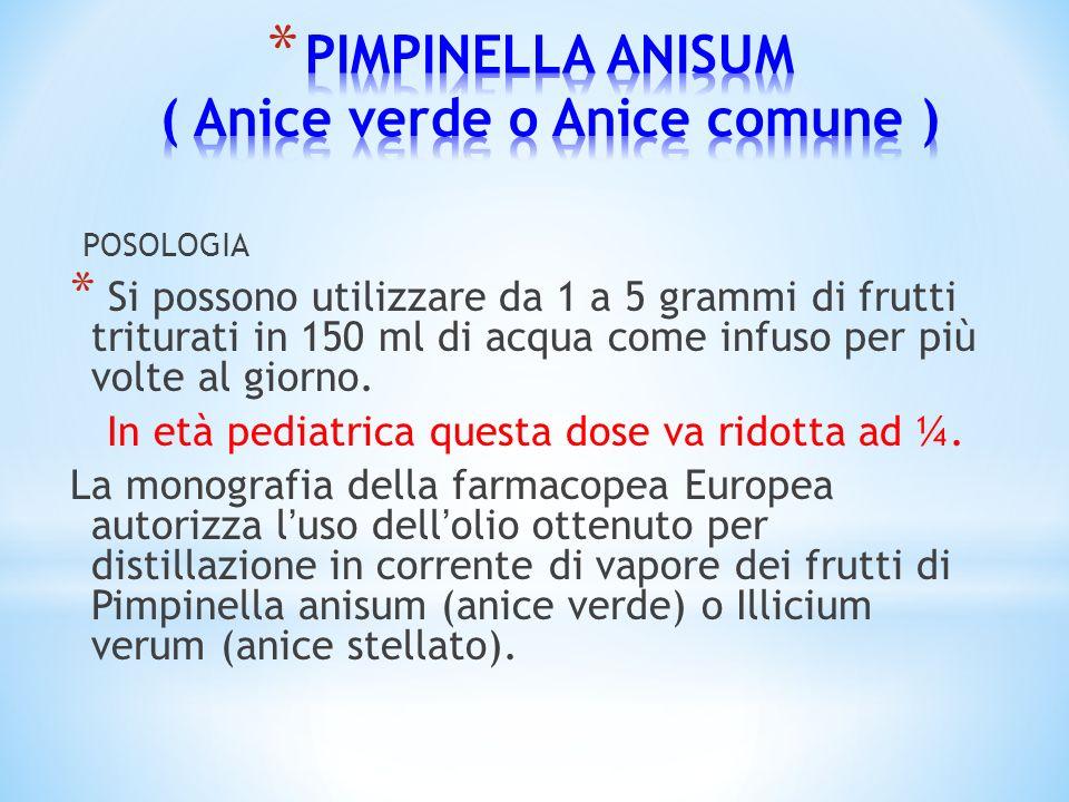 POSOLOGIA * Si possono utilizzare da 1 a 5 grammi di frutti triturati in 150 ml di acqua come infuso per più volte al giorno. In età pediatrica questa