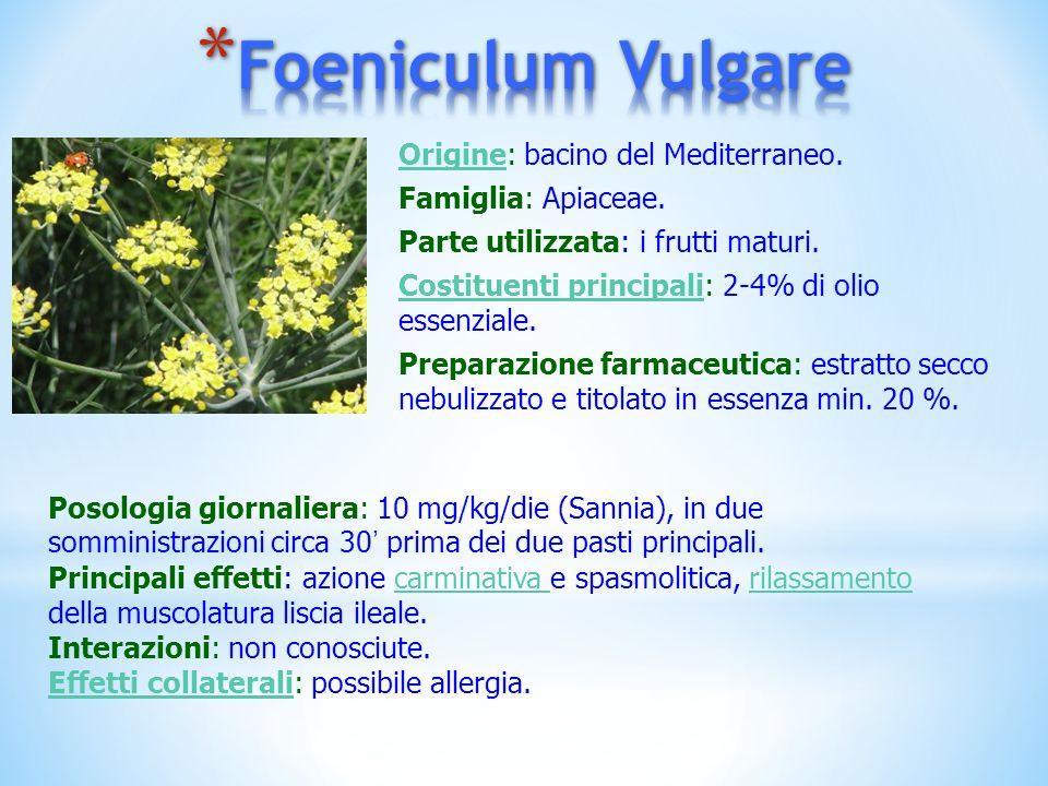 OrigineOrigine: bacino del Mediterraneo. Famiglia: Apiaceae. Parte utilizzata: i frutti maturi. Costituenti principaliCostituenti principali: 2-4% di