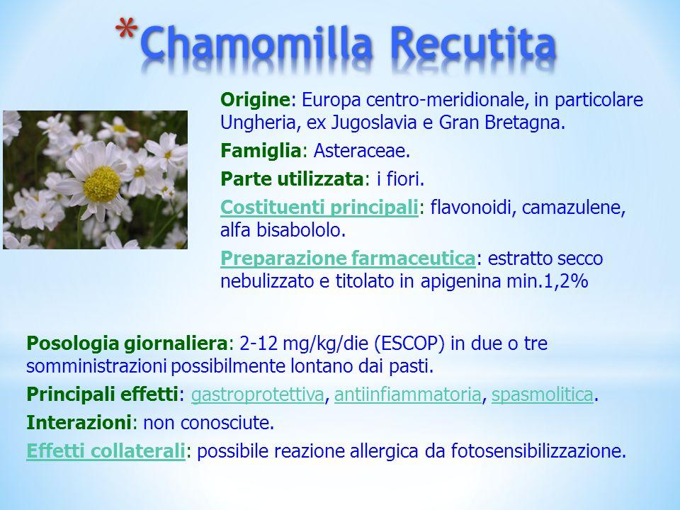 Origine: Europa centro-meridionale, in particolare Ungheria, ex Jugoslavia e Gran Bretagna. Famiglia: Asteraceae. Parte utilizzata: i fiori. Costituen