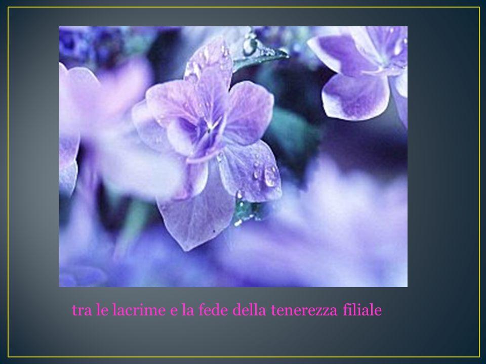 tra le lacrime e la fede della tenerezza filiale