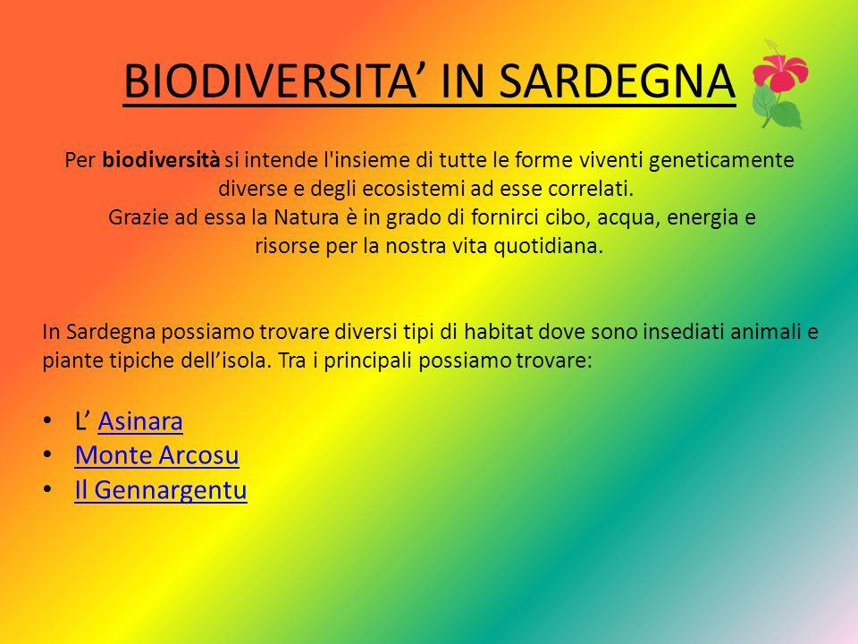 BIODIVERSITA IN SARDEGNA Per biodiversità si intende l insieme di tutte le forme viventi geneticamente diverse e degli ecosistemi ad esse correlati.