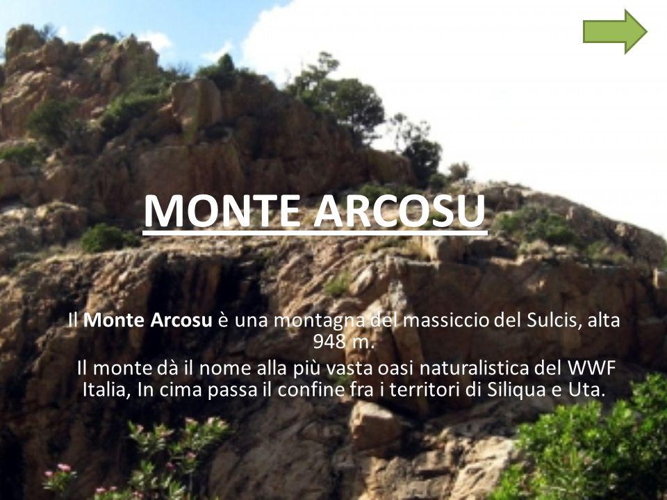 MONTE ARCOSU Il Monte Arcosu è una montagna del massiccio del Sulcis, alta 948 m.