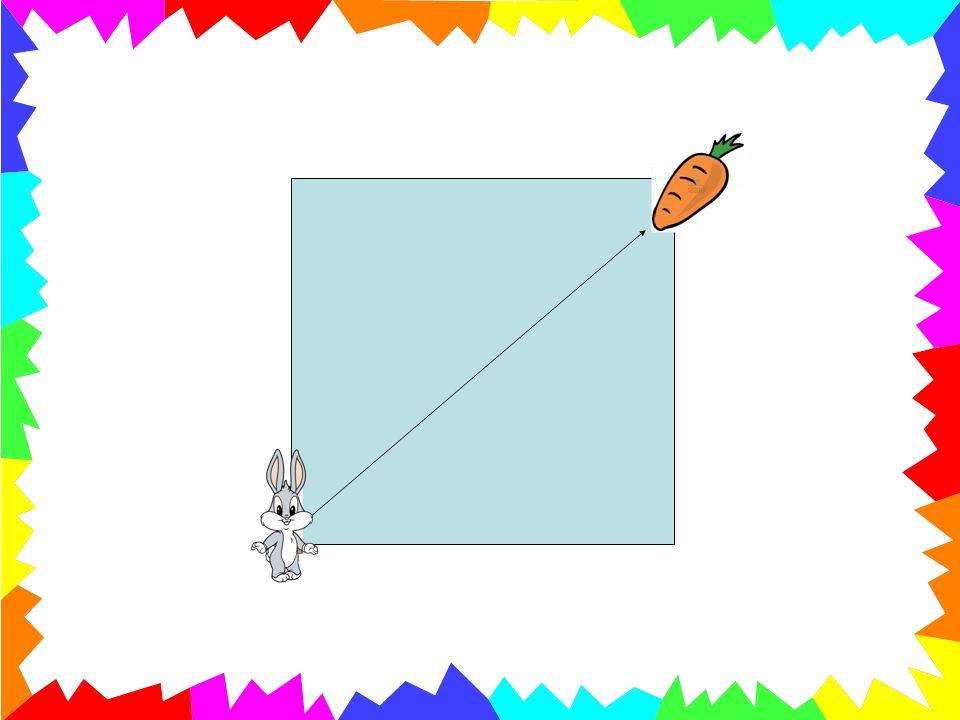 «Cosa beve il coniglio dopo aver mangiato?» La risposta sarà: «lacqua» Il bambino dovrà portare il coniglio allacqua, portando langolo in basso a sinistra verso il centro del quadrato: ottenendo così la terza linea per la costruzione del Tangram.