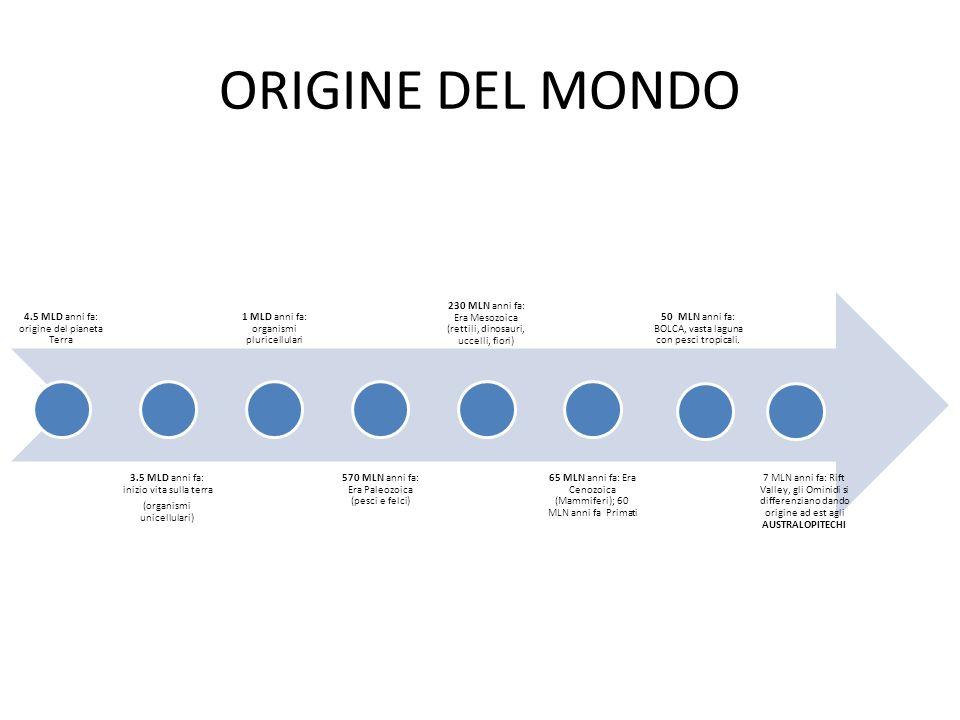 ORIGINE DEL MONDO 4.5 MLD anni fa: origine del pianeta Terra 3.5 MLD anni fa: inizio vita sulla terra (organismi unicellulari) 1 MLD anni fa: organism