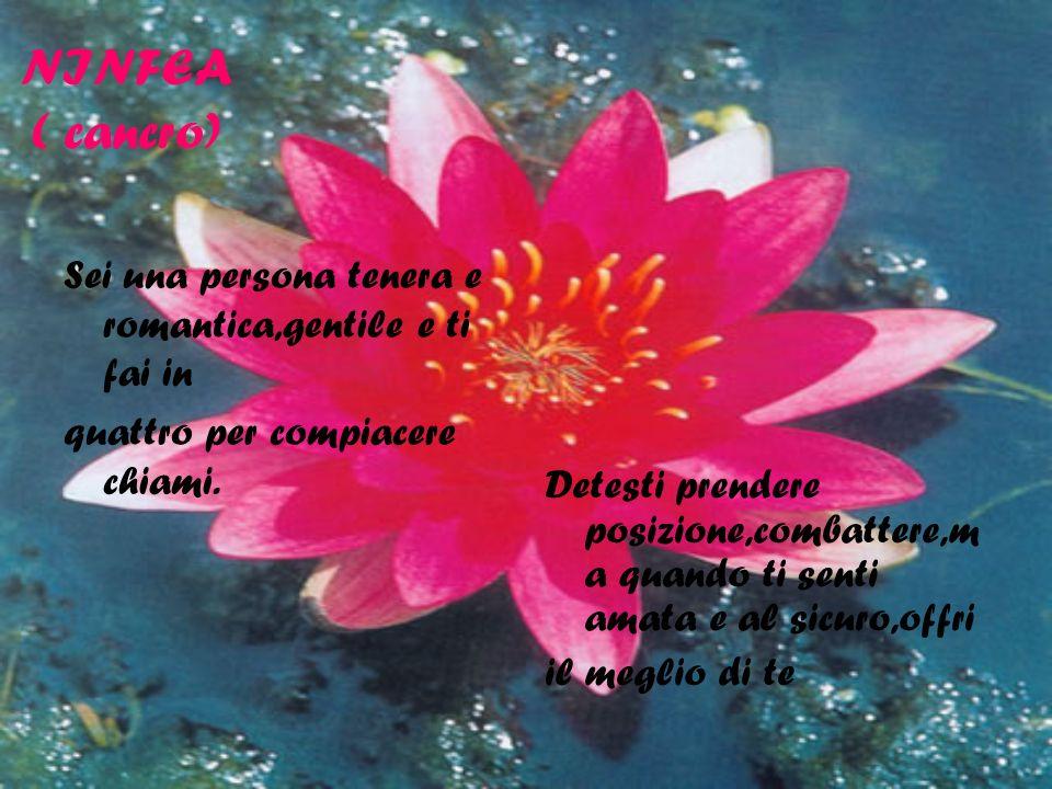 NINFEA ( cancro) Sei una persona tenera e romantica,gentile e ti fai in quattro per compiacere chiami. Detesti prendere posizione,combattere,m a quand
