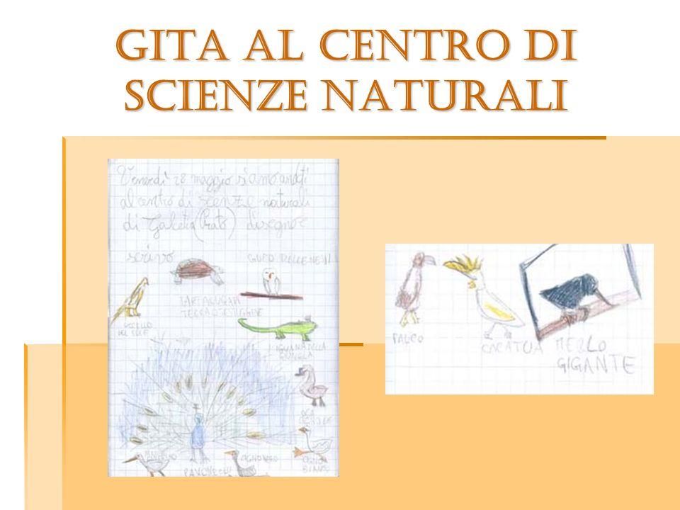 GITA AL CENTRO DI SCIENZE NATURALI
