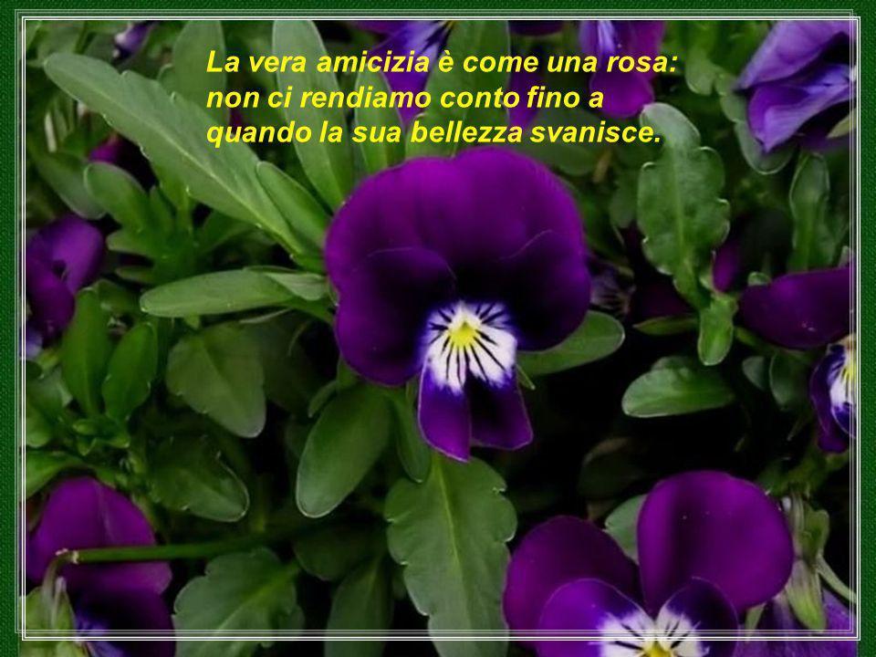 La Terra sorride nei fiori.