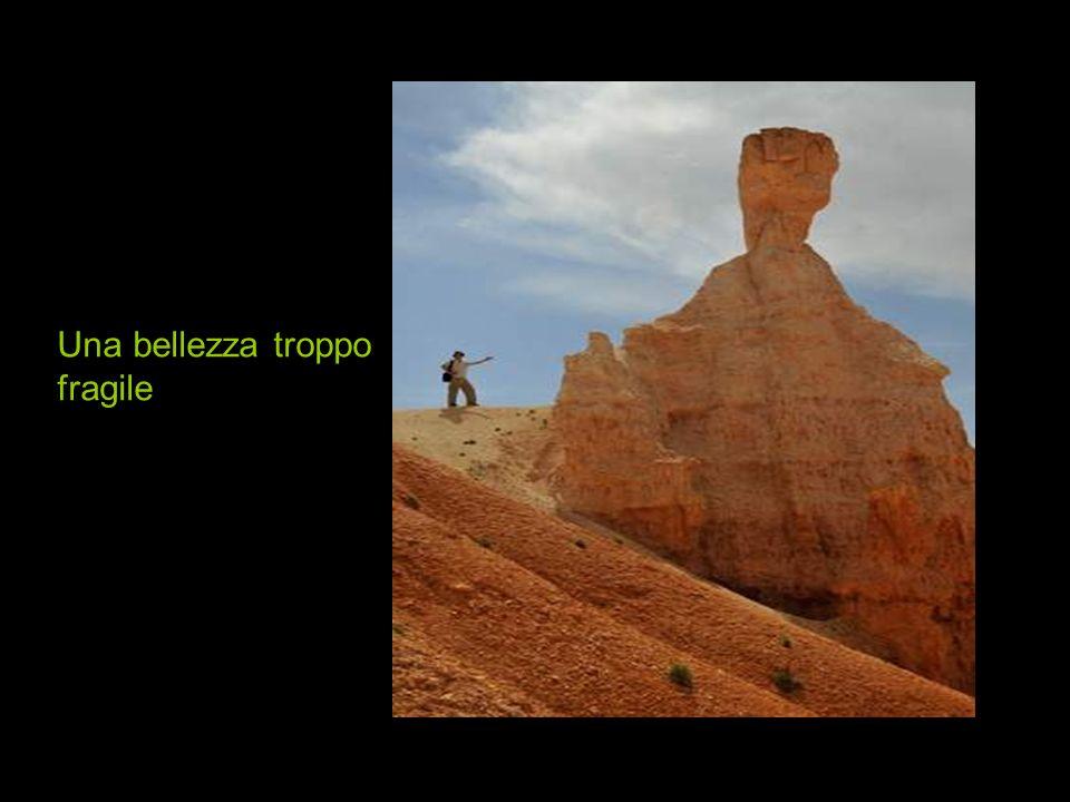Una mostra massiccia degli intagli della natura in Bryce Canyon