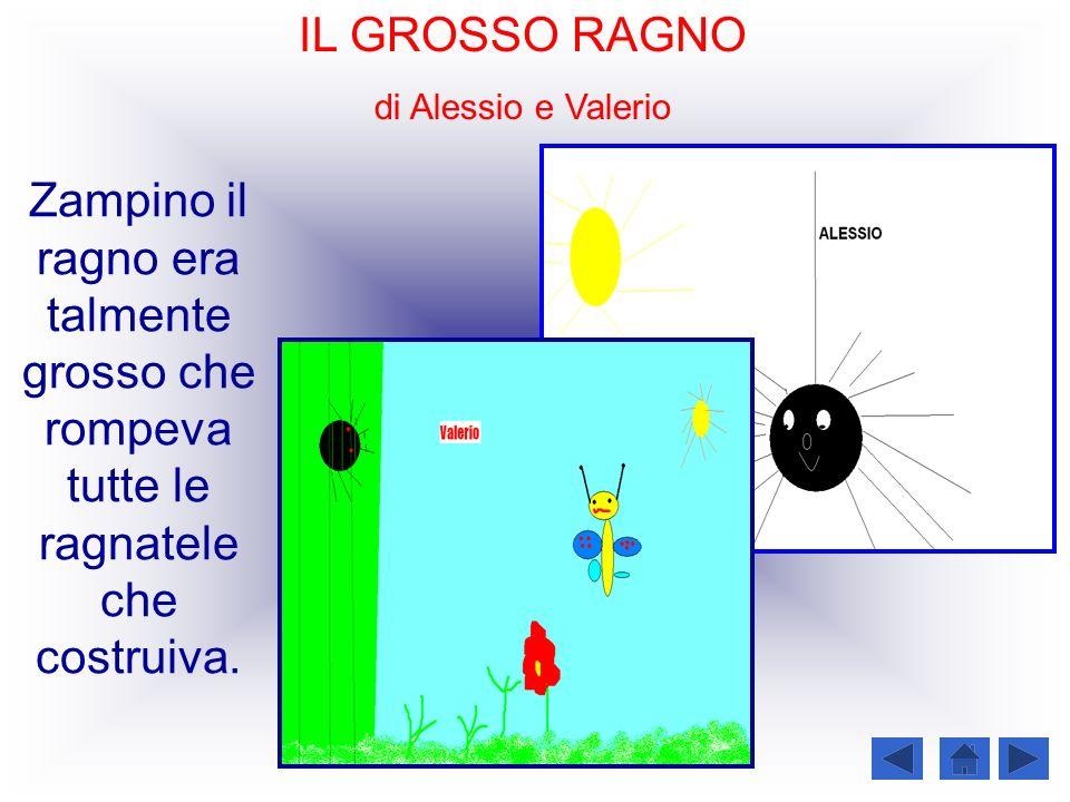 IL GROSSO RAGNO di Alessio e Valerio Zampino il ragno era talmente grosso che rompeva tutte le ragnatele che costruiva.