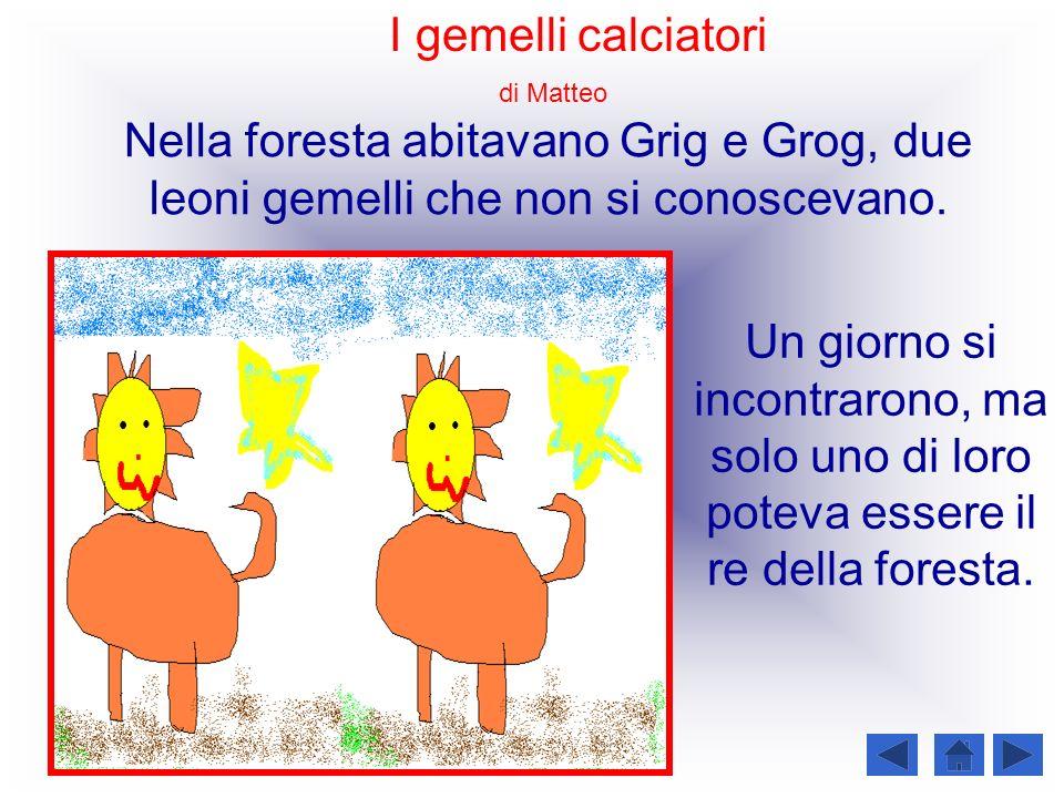 I gemelli calciatori Nella foresta abitavano Grig e Grog, due leoni gemelli che non si conoscevano. Un giorno si incontrarono, ma solo uno di loro pot