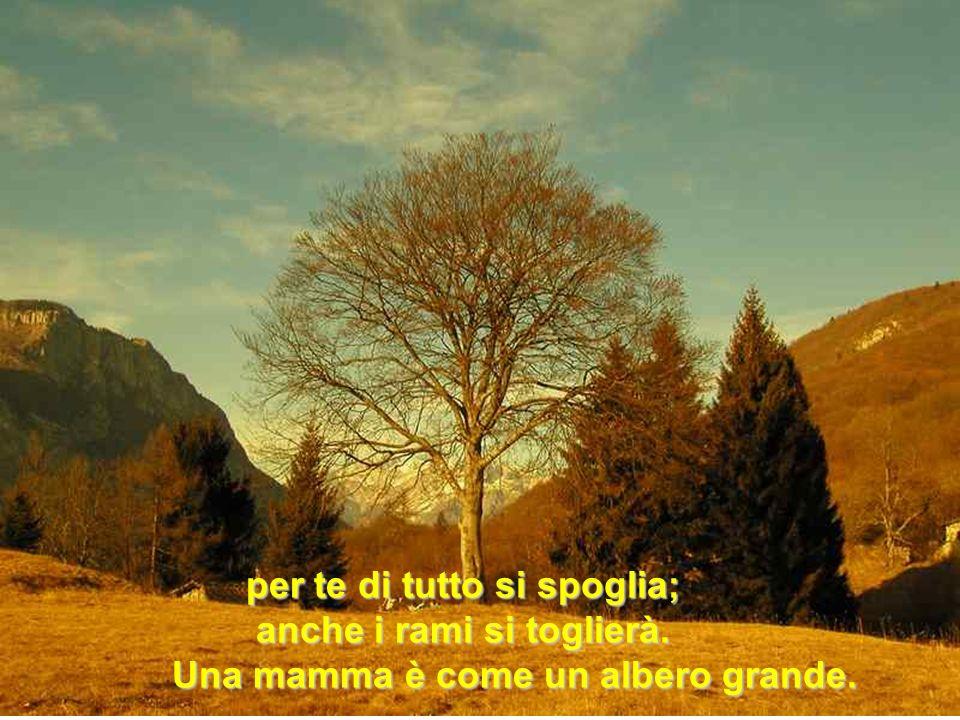 per te di tutto si spoglia; anche i rami si toglierà. Una mamma è come un albero grande. Una mamma è come un albero grande.