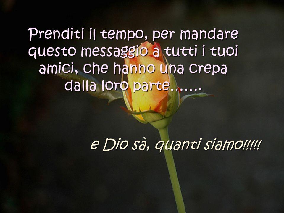 Allora, a tutti i miei amici con una crepa nella brocca, auguro una giornata meravigliosa e non dimenticate, di godervi il profumo dei fiori che cresc