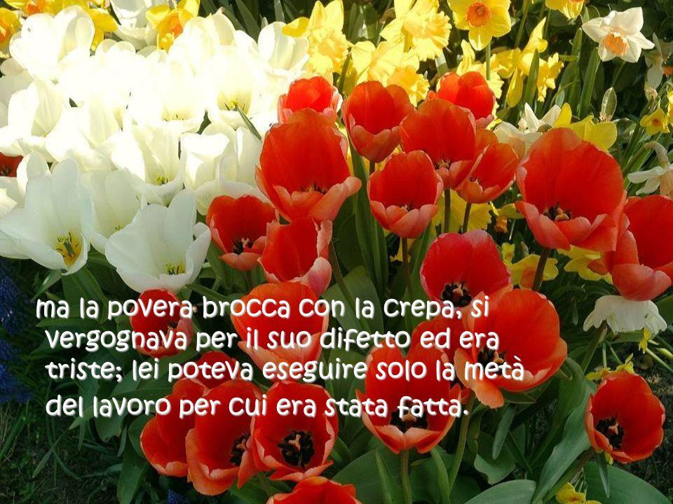 Allora, a tutti i miei amici con una crepa nella brocca, auguro una giornata meravigliosa e non dimenticate, di godervi il profumo dei fiori che crescono dalla vostra parte del sentiero.