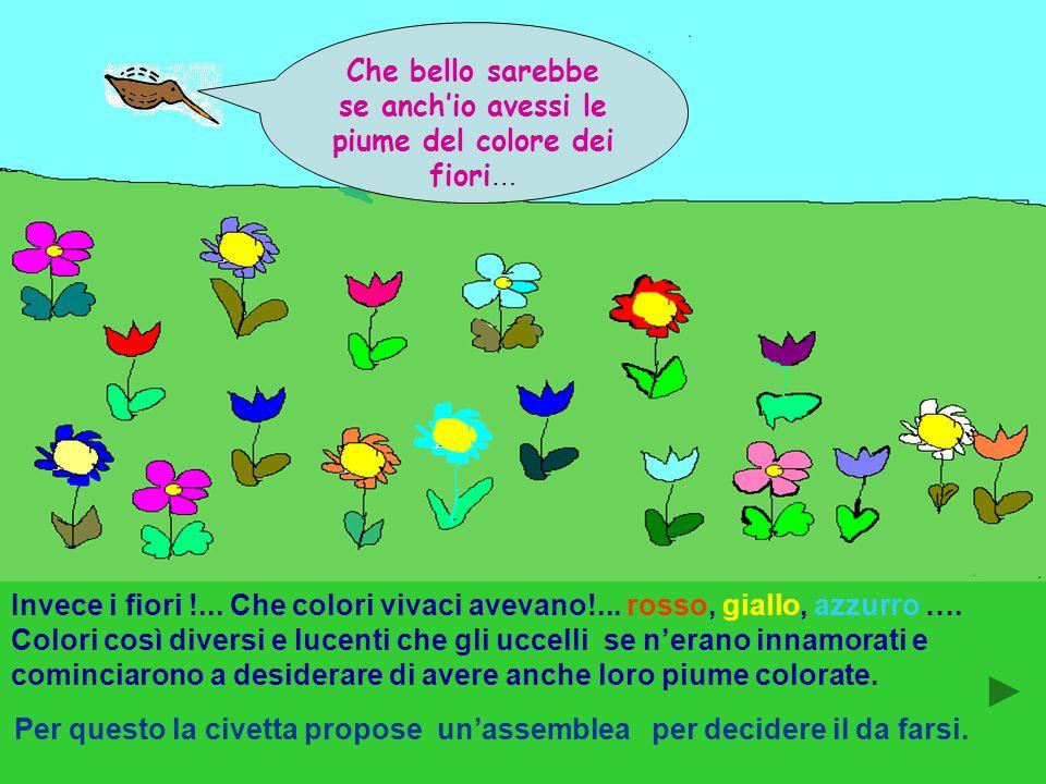 Molto, ma molto tempo fa, quando ancora non cera un solo uomo sulla terra, gli uccelli avevano tutti lo stesso colore : il colore della terra. I fiori