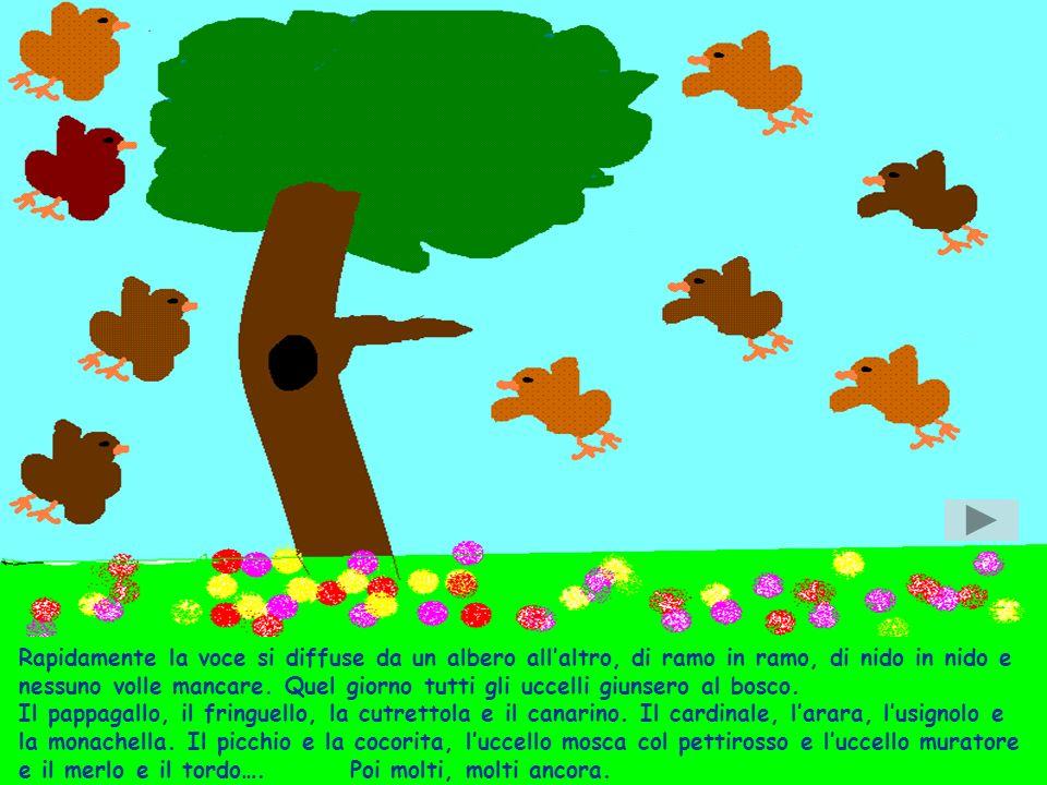 Rapidamente la voce si diffuse da un albero allaltro, di ramo in ramo, di nido in nido e nessuno volle mancare.