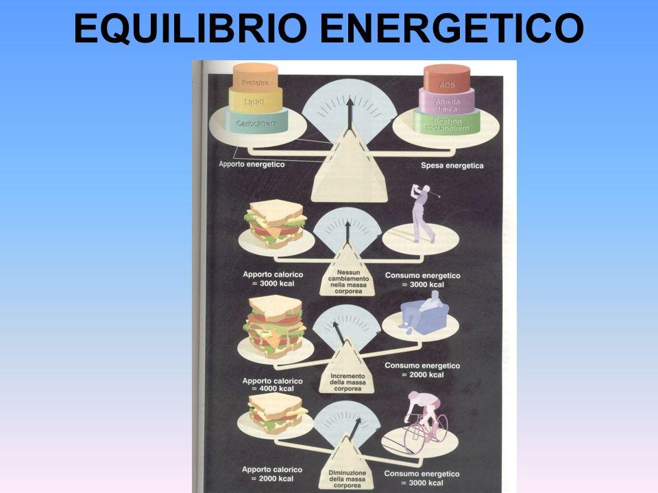 EQUILIBRIO ENERGETICO