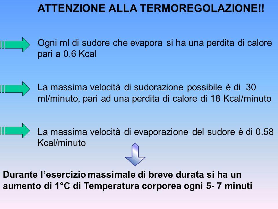 ATTENZIONE ALLA TERMOREGOLAZIONE!! Ogni ml di sudore che evapora si ha una perdita di calore pari a 0.6 Kcal La massima velocità di sudorazione possib