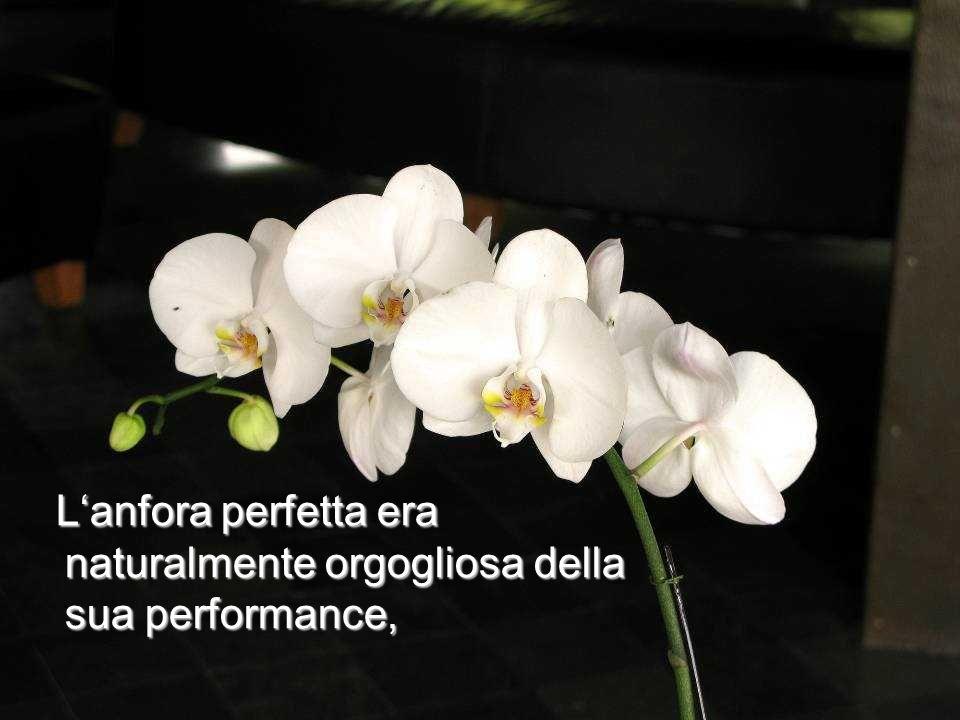 Lanfora perfetta era naturalmente orgogliosa della sua performance, Lanfora perfetta era naturalmente orgogliosa della sua performance,