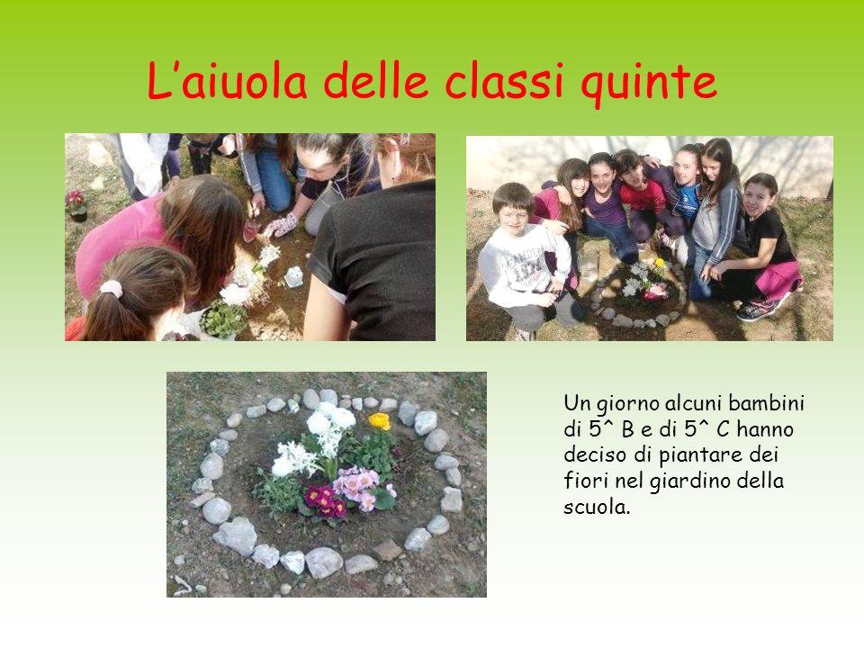 Laiuola delle classi quinte Un giorno alcuni bambini di 5^ B e di 5^ C hanno deciso di piantare dei fiori nel giardino della scuola.