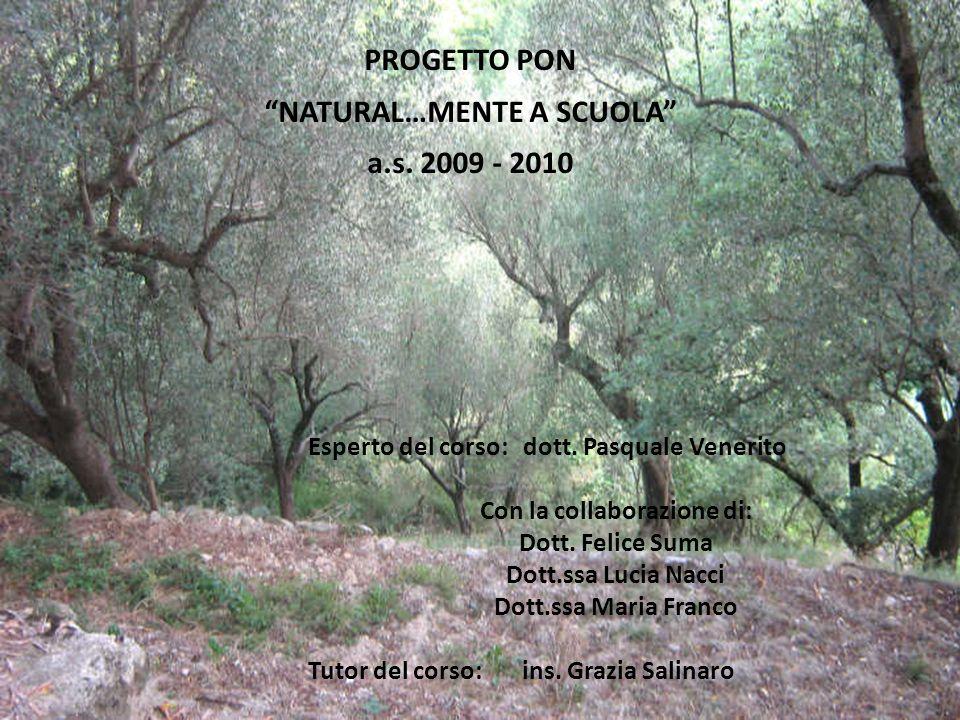 PROGETTO PON NATURAL…MENTE A SCUOLA a.s. 2009 - 2010 Esperto del corso: dott. Pasquale Venerito Con la collaborazione di: Dott. Felice Suma Dott.ssa L