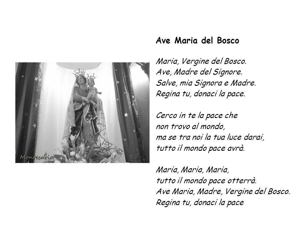 Ave Maria del Bosco Maria, Vergine del Bosco.Ave, Madre del Signore.