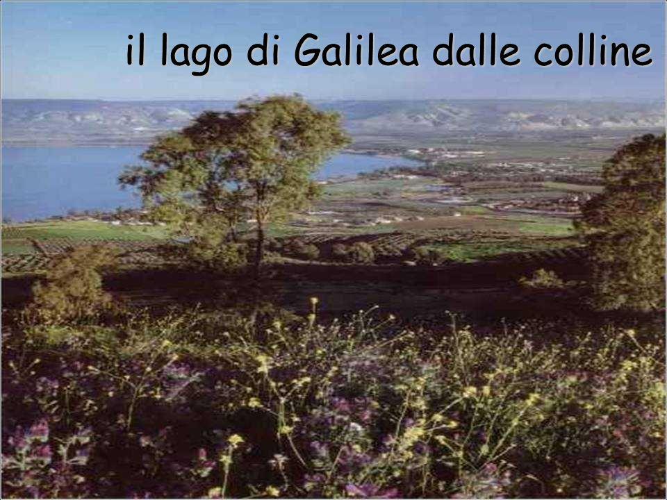 il lago di Galilea dalle colline