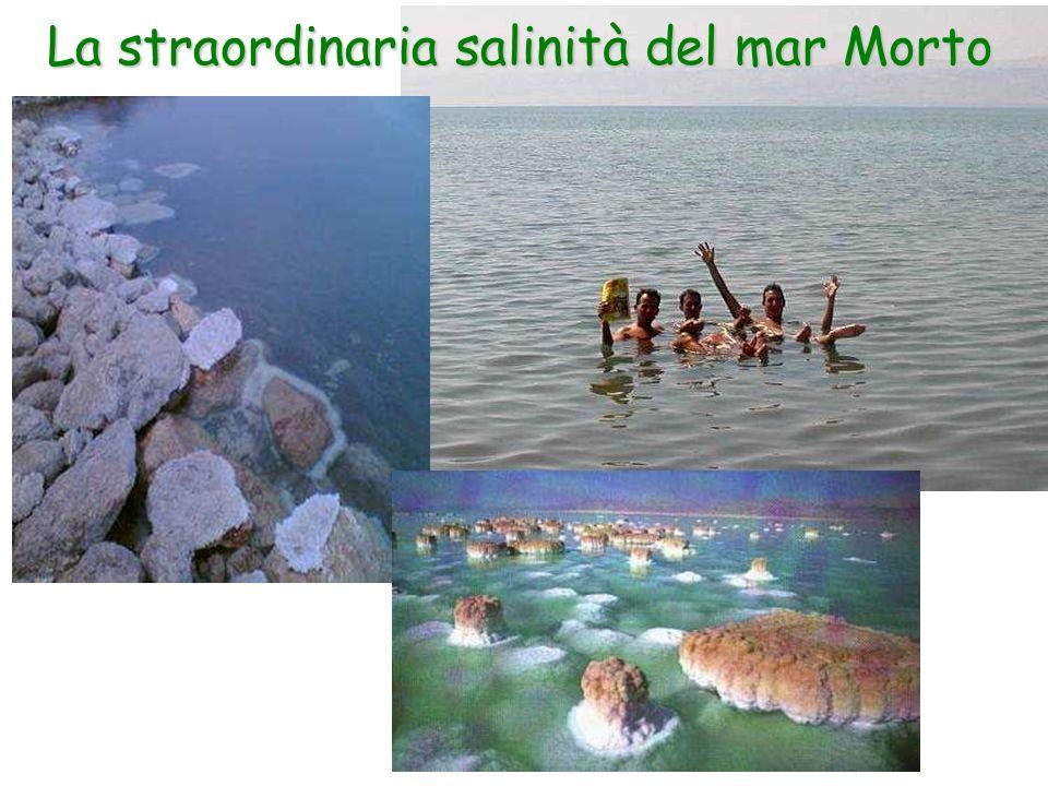 La straordinaria salinità del mar Morto