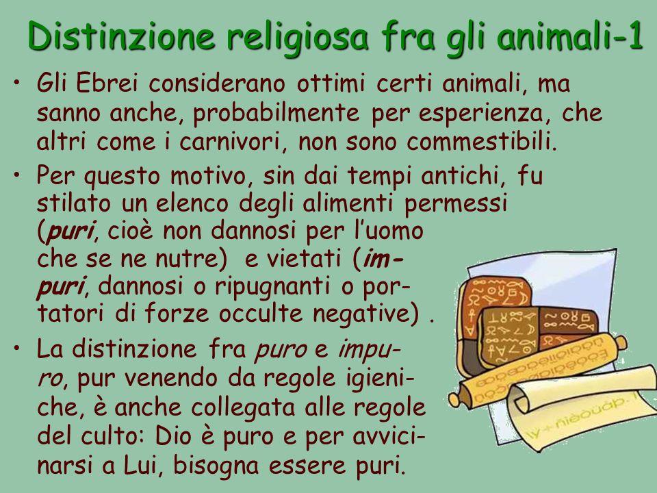 Distinzione religiosa fra gli animali-1 Gli Ebrei considerano ottimi certi animali, ma sanno anche, probabilmente per esperienza, che altri come i carnivori, non sono commestibili.