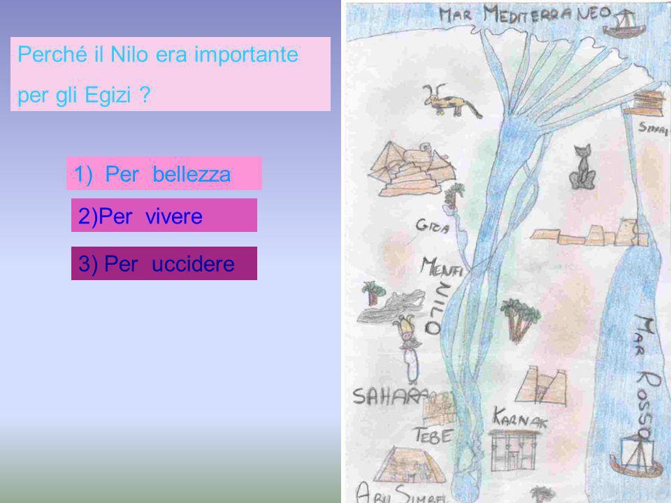 Fiore di loto e papiro 2. Cedro e ulivi 3. Frumento e patate Quali piante crescevano vicino al Nilo?.