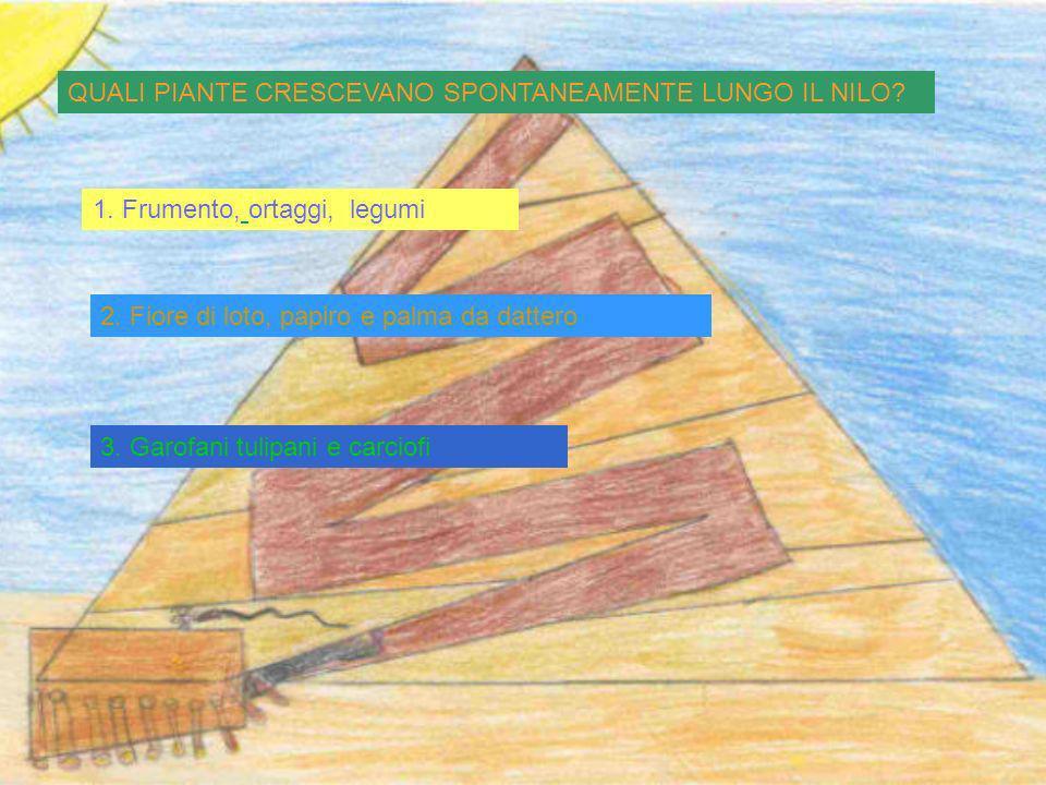1.Sacerdoti 2. Scribi 3. Guerrieri Chi cera al secondo posto nella piramide sociale?
