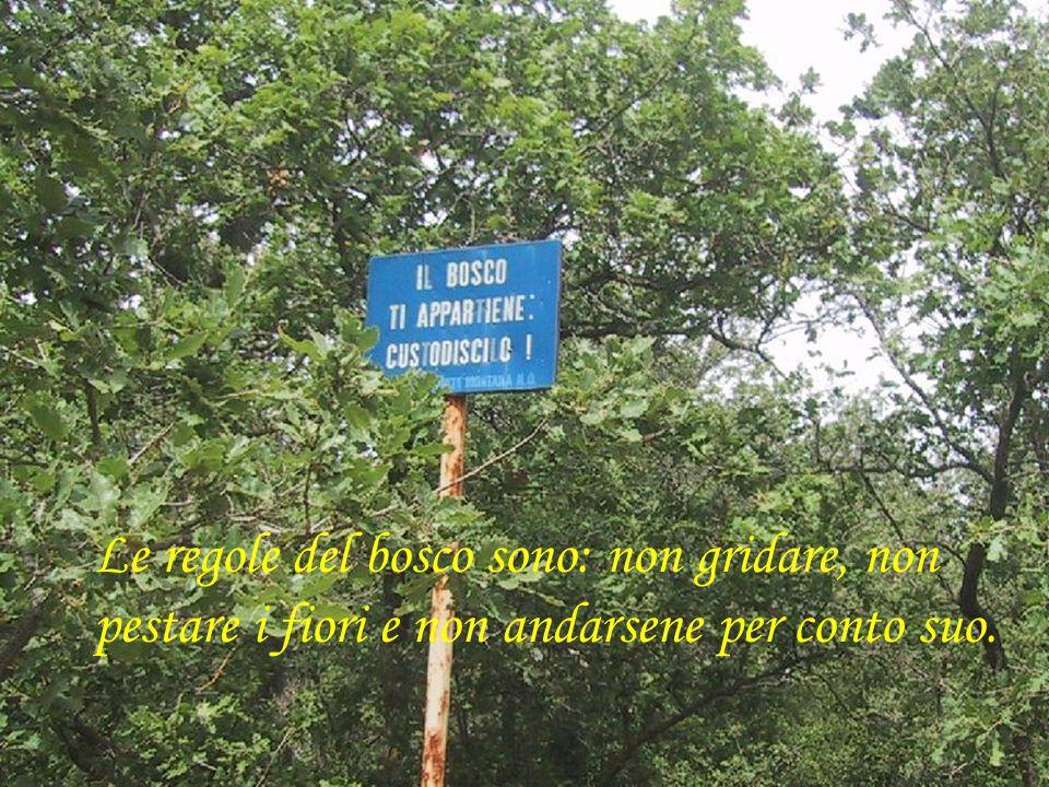 Ed ha chiesto alle maestre di scrivere una lettera… …al sindaco di Ruvo per far pulire il bosco